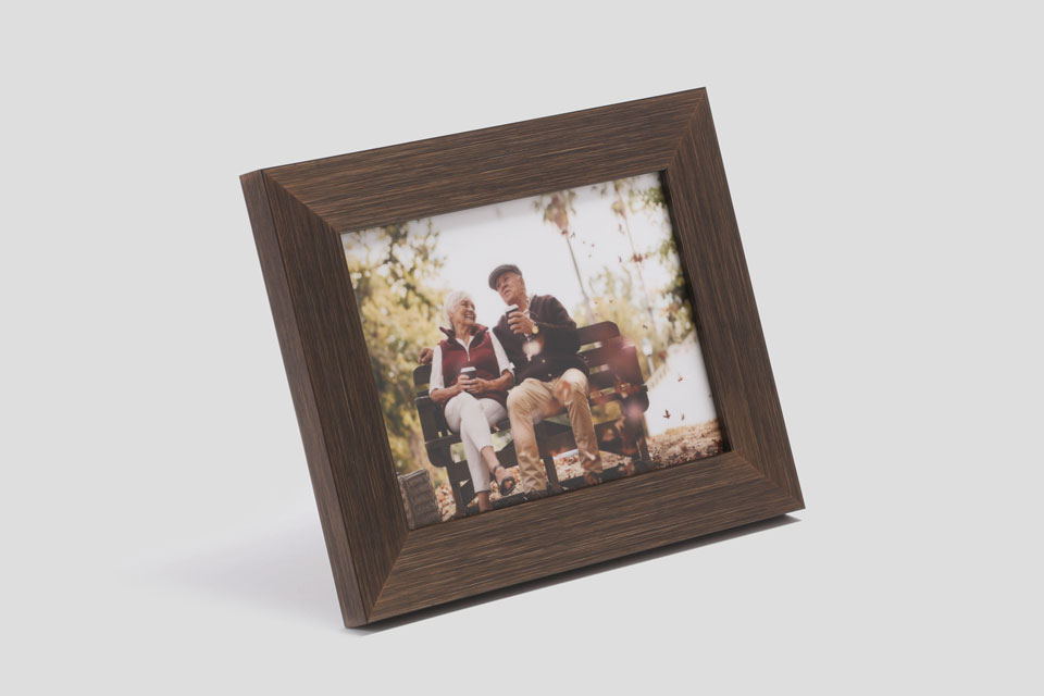 Meadow Desk Frame